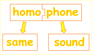 homophone-definition