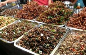 แมลงทอด-insect snack