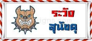 Beware of the dog in Thai language ระวังสุนัขดุ