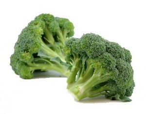 บร็อกโคลี่ broccoli