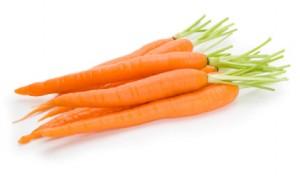 แครอท carrot