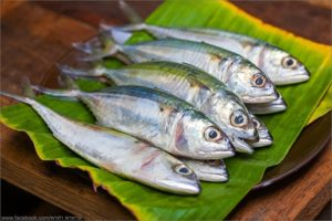 Mackerel Fish for Yellow Thai Curry