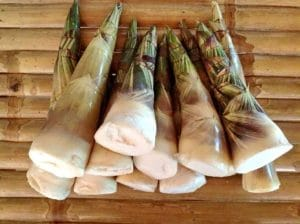Young Bamboo Shoots for Thai Food Curry | Learn Thai Script Online