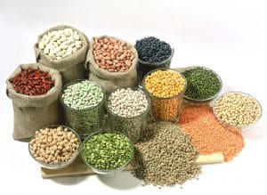 Grains | Food Groups | Thai Language